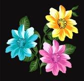 Flower design 4 Royalty Free Stock Photos