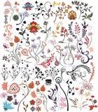 Flower design elements vector illustration