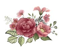 Flower Design elements. Elegant card royalty free illustration