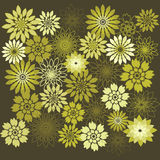 Flower Design Elements. Flower Background Royalty Free Stock Images