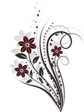 Flower design elements vector Royalty Free Stock Images