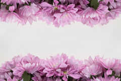 Flower design frame - theme with pink flowers Stock Photography