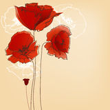 Flower design greeting card. Flower background for greeting cards, poppy design Stock Photo