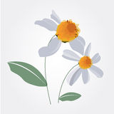 Flower design vector Stock Photography