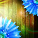 Flower with dew on wood. plus EPS10 Stock Photos
