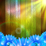 Flower with dew on wood. plus EPS10 Stock Photography