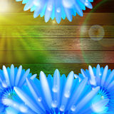 Flower with dew on wood. plus EPS10 Stock Images