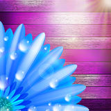 Flower with dew on wood. plus EPS10 Royalty Free Stock Image