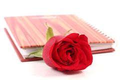 Flower and diary royalty free stock photo