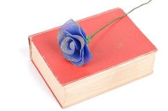 Flower and dictionary Royalty Free Stock Photography