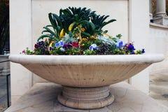 Flower Display Stock Image