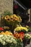 Flower display outside florist shop. Stock Photos