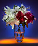 Flower Display - Still Life (Light Painting) Royalty Free Stock Photography