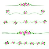 Flower divider Stock Image