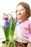 Flower doctor Stock Photo