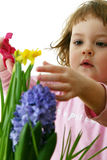 Flower doctor Stock Image