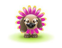 Flower Dog Stock Image
