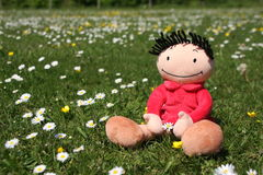 Flower doll. Happy doll cherishing flowers during summertime (concept for joy and happiness Royalty Free Stock Photo