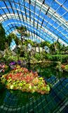 Flower Dome, Gardens by the Bay, Singapore Stock Photo