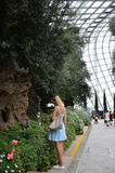Flower Dome at Gardens by the Bay in Singapore Stock Photo
