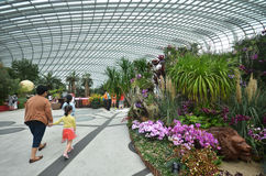 Flower Dome at Gardens by the Bay in Singapore Royalty Free Stock Images