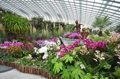 Flower Dome at Gardens by the Bay in Singapore Stock Image