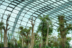 Flower Dome, Gardens by the Bay Royalty Free Stock Images