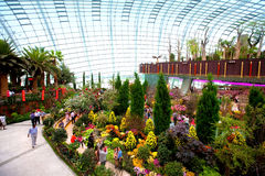 Flower Dome, one of two conservatories within the Gardens by the Bay, Singapore Royalty Free Stock Photography