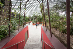 Flower Dome, Singapore. Interior Flower Dome, Gardens by the Bay, Singapore Royalty Free Stock Images
