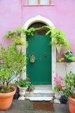 Flower door Stock Image