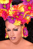 Flower Drag queen. Royalty Free Stock Photo