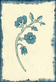 Flower drawing on blotted background Stock Image