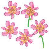 Flower drawing stock illustration