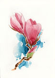 Flower drawn by pencil,brush and watercolor Royalty Free Stock Images