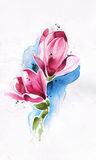 Flower drawn by pencil,brush and watercolor Royalty Free Stock Photos
