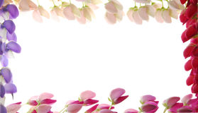 Flower edged frame. A border frame edged with colorful flowers stock photo