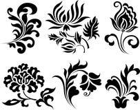 Flower element design Stock Photos