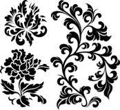 Flower element design Royalty Free Stock Image