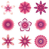 Flower Element Set. Set of 9 vector flowers with shading.  Colored using simple gradients and flat colors only.  Colors are just a few global swatches, so they Royalty Free Stock Photos