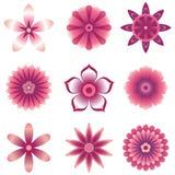 Flower Element Set Royalty Free Stock Photos
