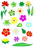Flower elements Royalty Free Stock Photos