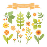 Flower elements. Royalty Free Stock Photography