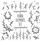 08_flower_elements_set_1. Set of hand-drawn vintage floral elements Royalty Free Stock Images