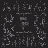 08_flower_elements_set_5. Set of hand-drawn vintage floral elements Stock Images