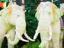 Flower elephants. Flowers are arranged into elephant statues Stock Photos
