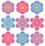 Flower Embellishments Stock Image