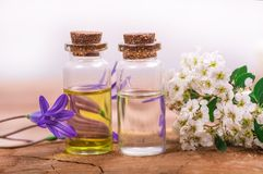 Flower essential oil. Essential oil in small bottle with spring flower on wood Royalty Free Stock Photography