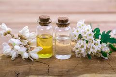 Flower essential oil. Essential oil in small bottle with spring flower on wood Royalty Free Stock Photo