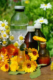 Flower essential oil and tincture. Concept of calendula and camomille flower essential oil and tincture - beauty treatment royalty free stock images