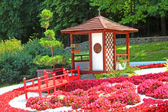 Flower exhibition `Japan through the eyes of Ukraine` at Spivoche Pole in Kyiv, Ukraine royalty free stock images
